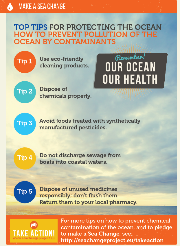 Exciting Ocean Outreach Activities Revealed in the Sea Change Project's Third Newsletter