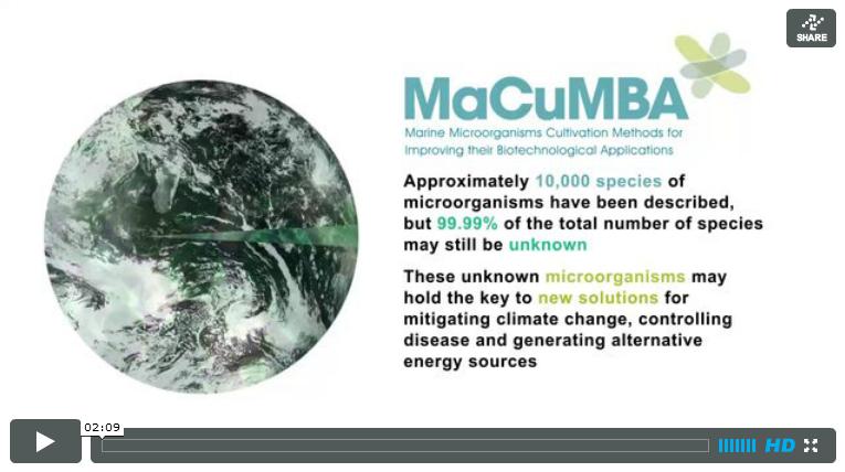 MaCuMBA Video