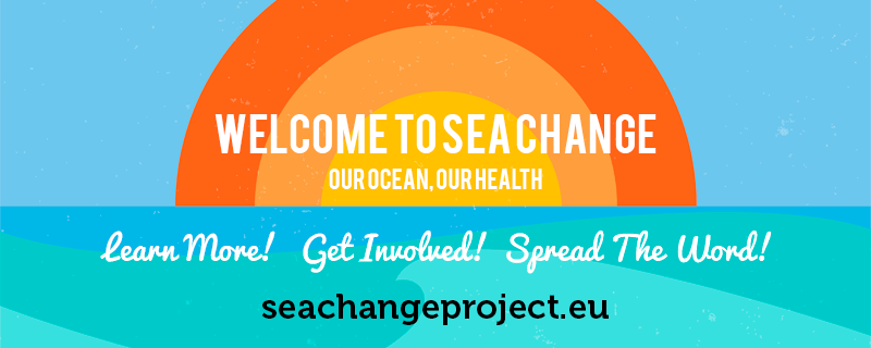 SeaChange NewSite
