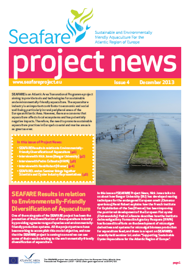 SEAFARE Newsletter Dec 2013