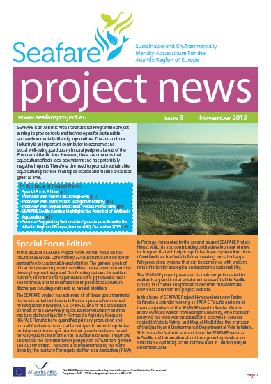 SEAFARE Newsletter Nov 2013