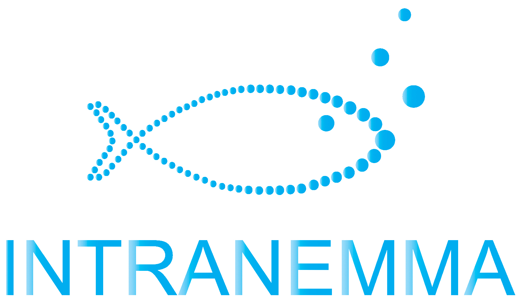 INTRANEMMA logo