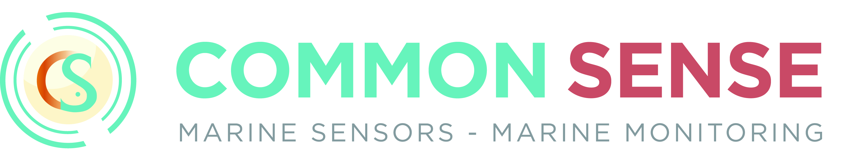 Additional Logo COMMON SENSE